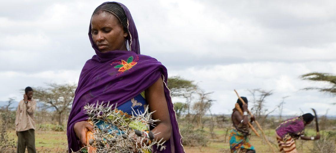 HEKS in Äthiopien